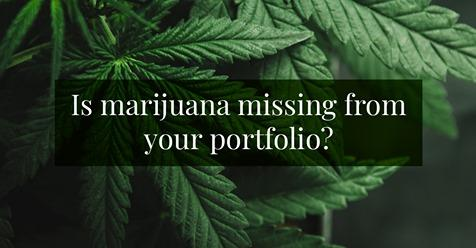 What do you need to know about investing in marijuana? Thumbnail