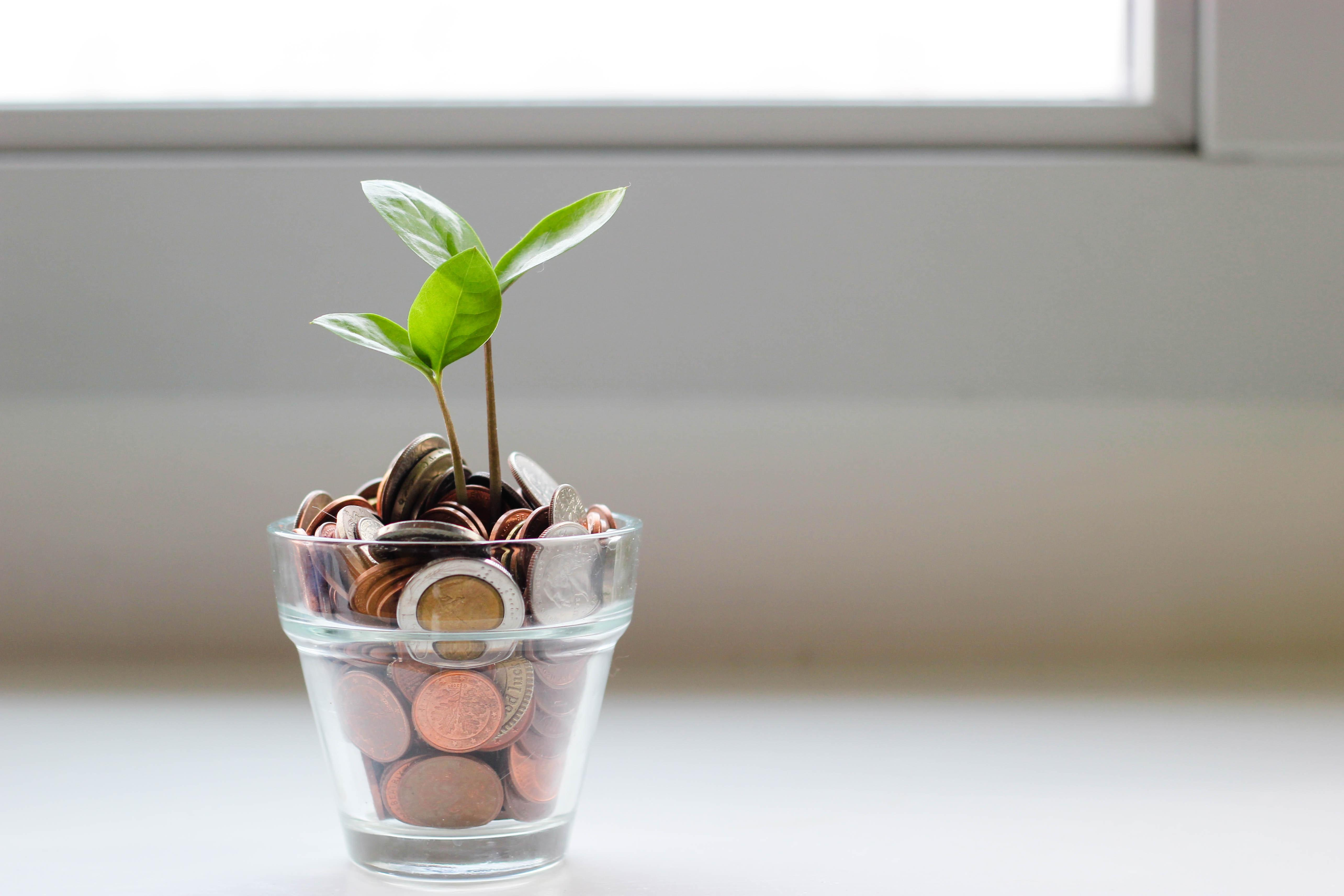 How Should I Invest My Roth IRA in 2021? Thumbnail