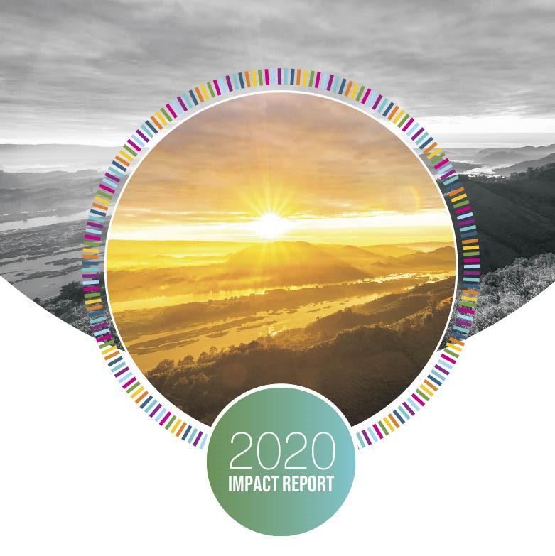 2020 Impact Report Thumbnail