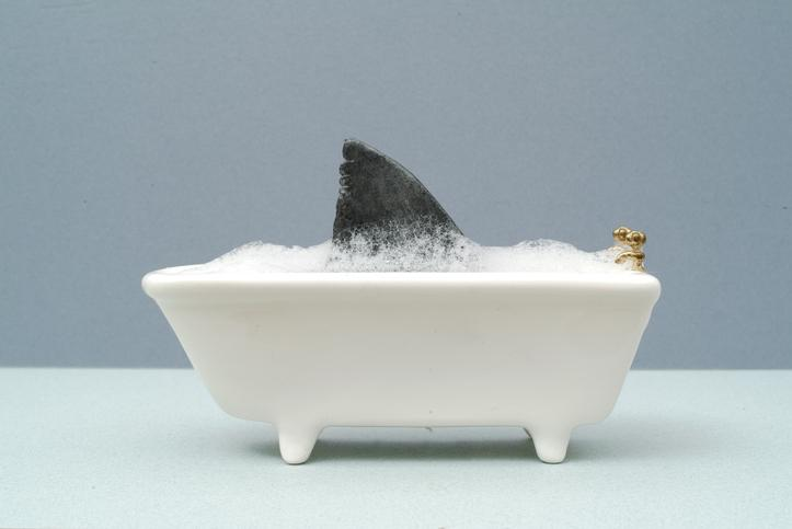 Bathtubs and Sharks: The Difference between Fear and Danger Thumbnail