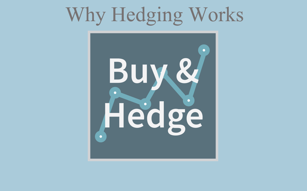 The Case for NOT Timing the Market but Hedging: The Hedgers Opportunity and Case Against Staying in Cash Thumbnail