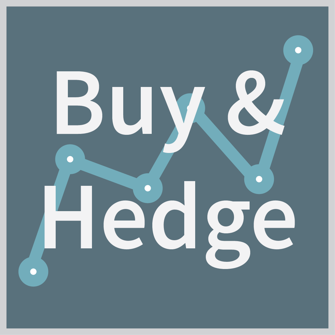 Buy & Hedge Investments, ZEGA Financial