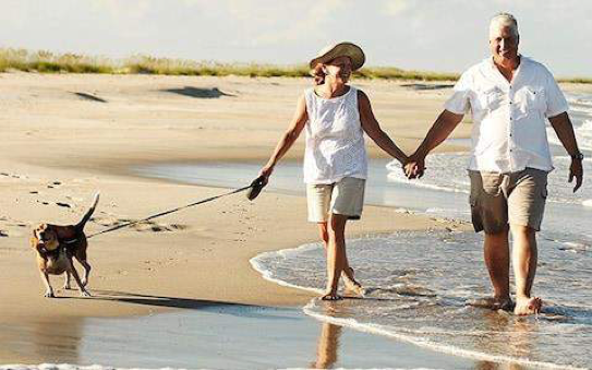 Couple walking on a dog on a beach