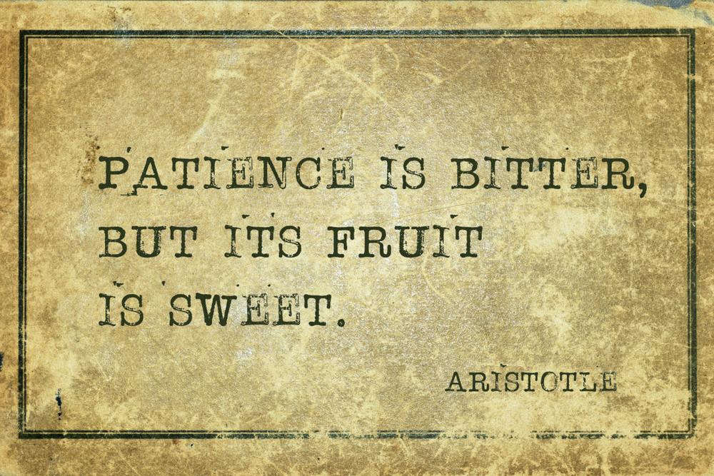 Patience is bitter, fruit is sweet