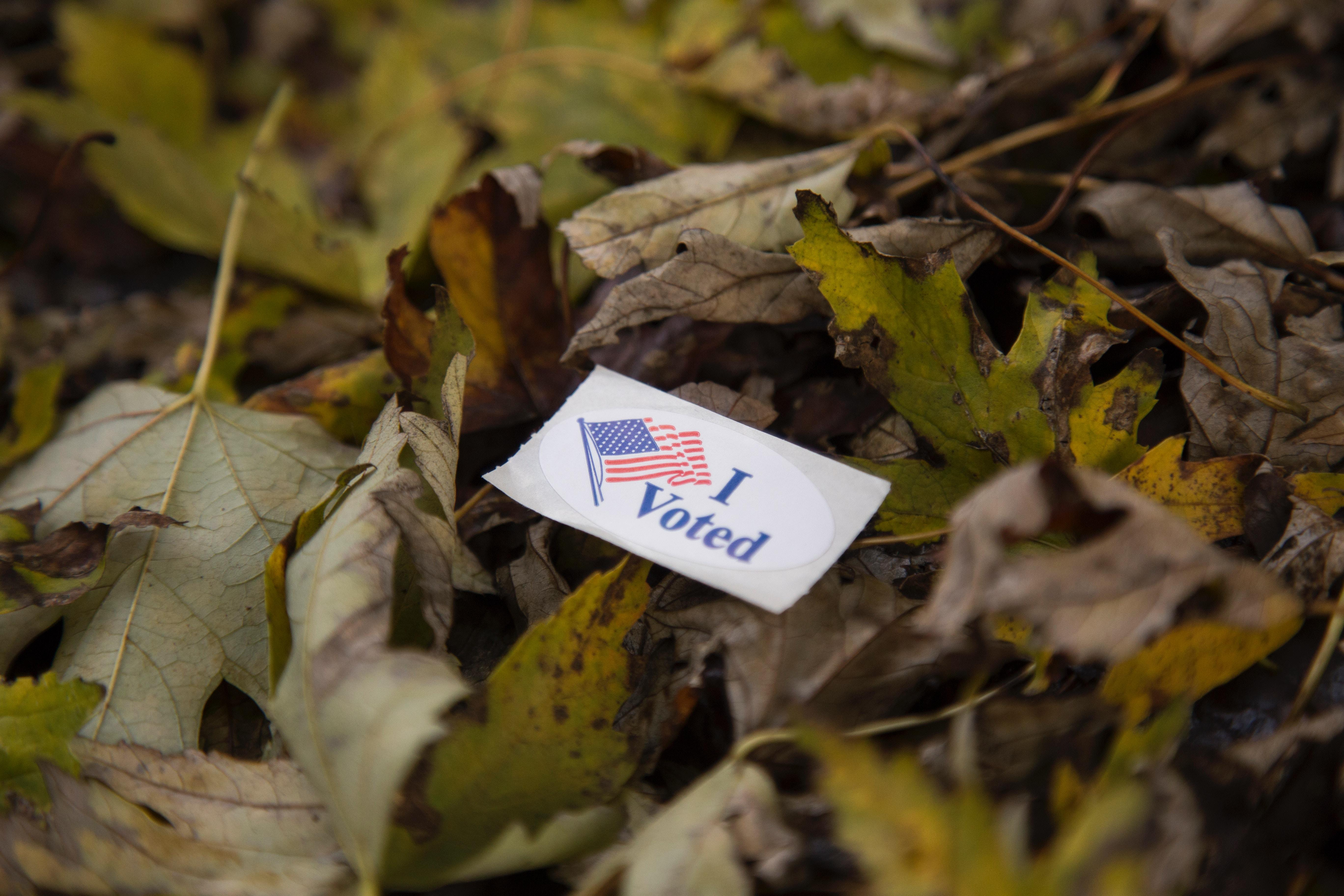Four things you should know about the midterms Thumbnail