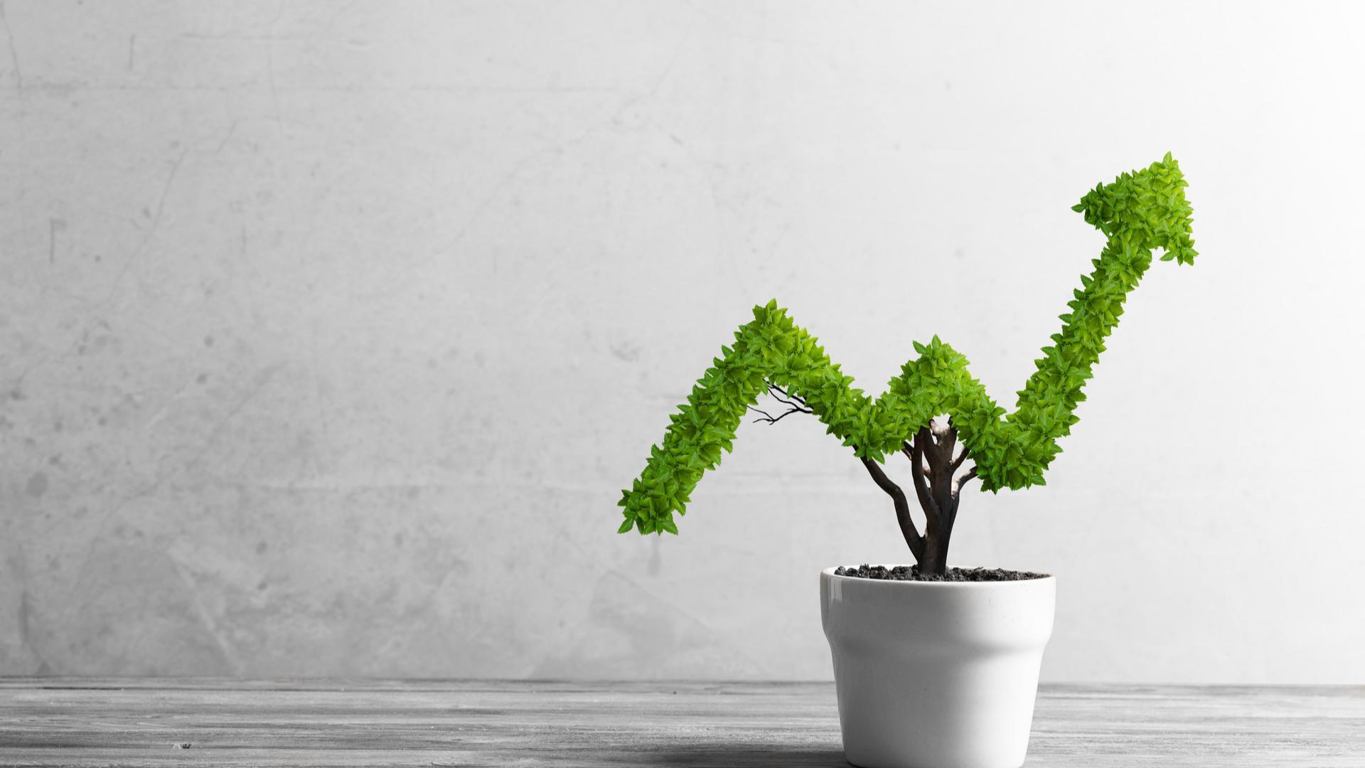 Big Gains in Small Stocks Thumbnail