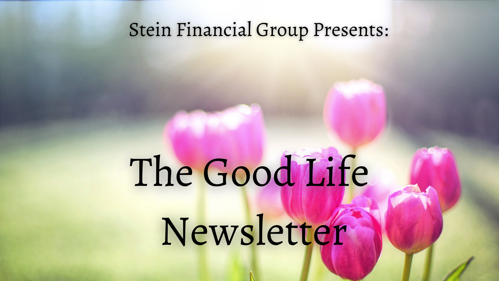 The Good Life Newsletter - Decline in Stocks and Bond Yields Thumbnail