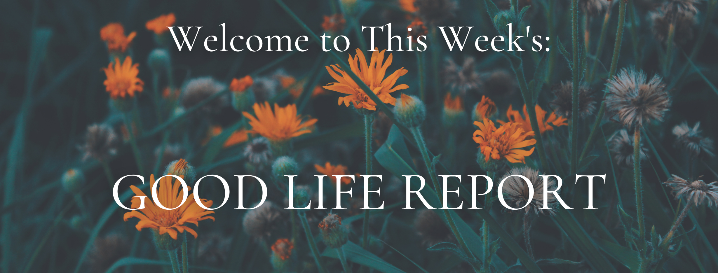The Good Life Report - House Selling Tips & Gratitude Journals Thumbnail