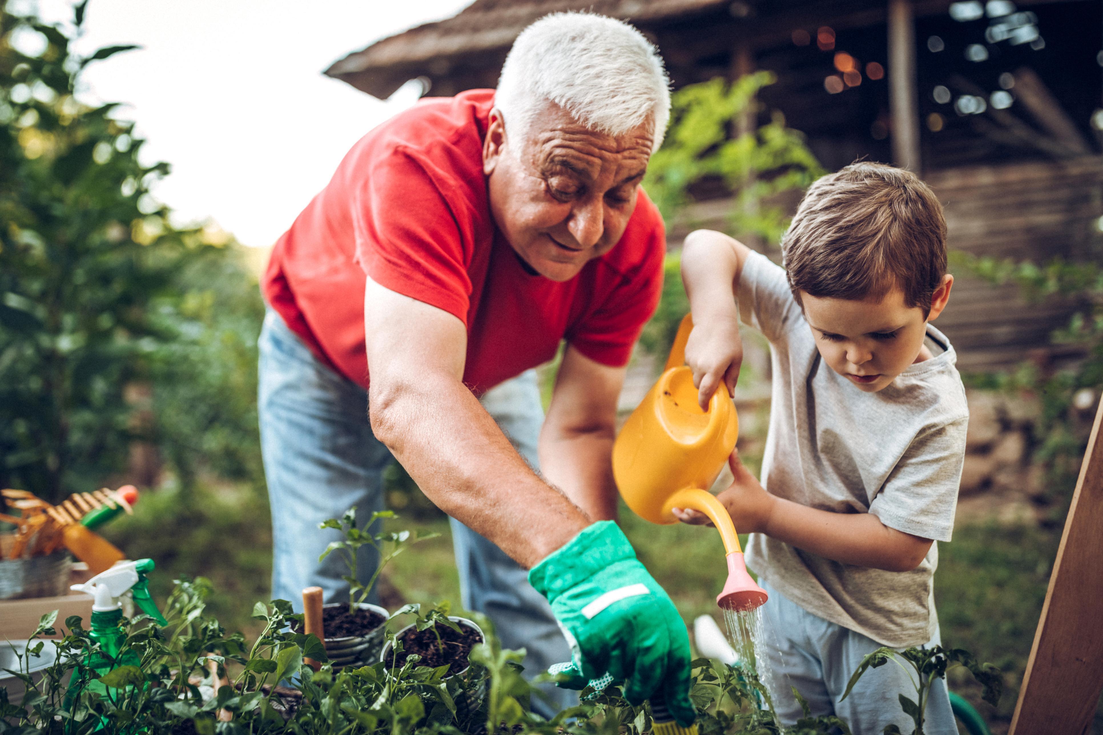 Vivez une retraite heureuse, demeurez en bonne santé  Thumbnail