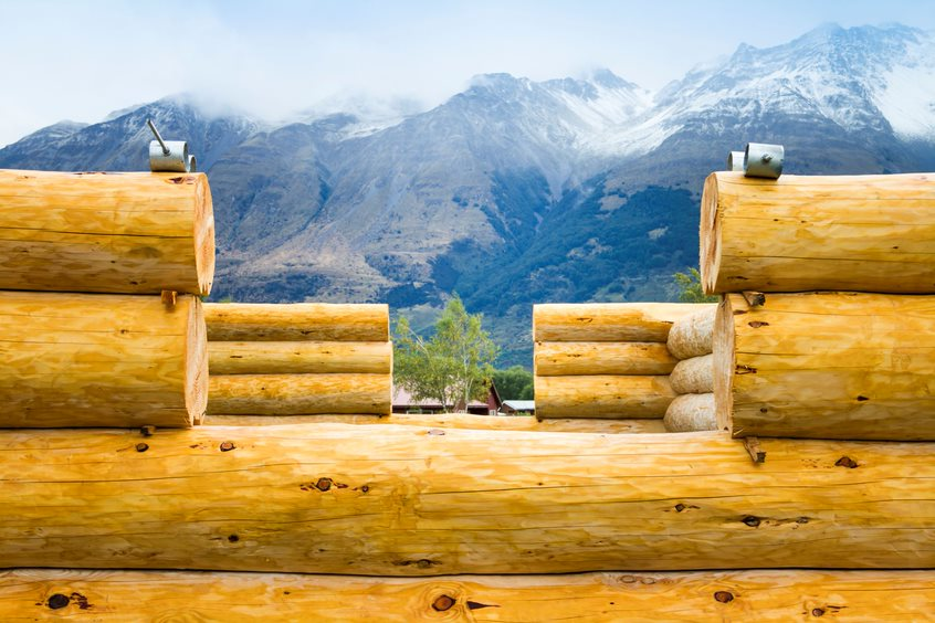 image of logs and a mountain