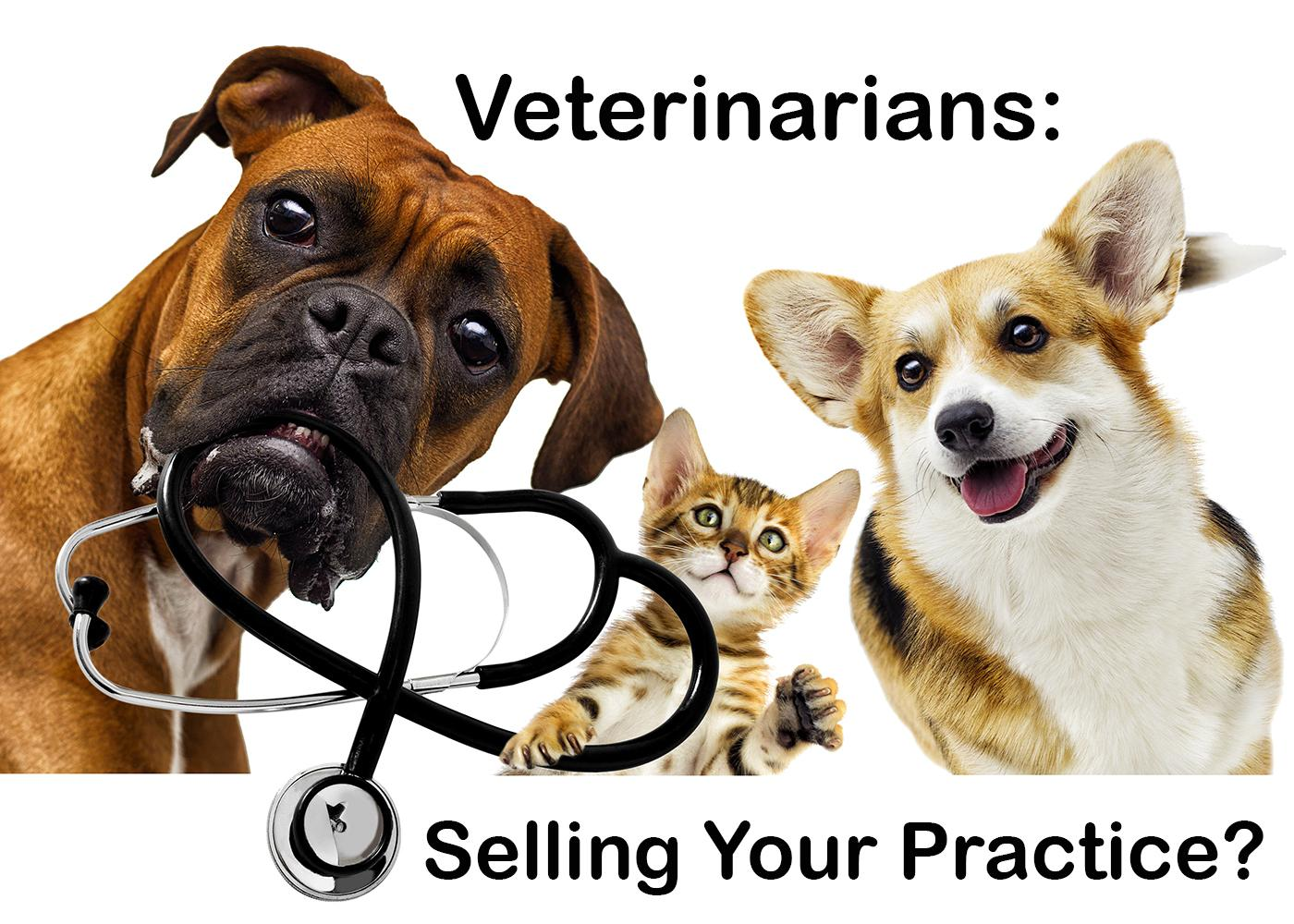 Veterinarians: What to Consider When Selling Your Practice Thumbnail