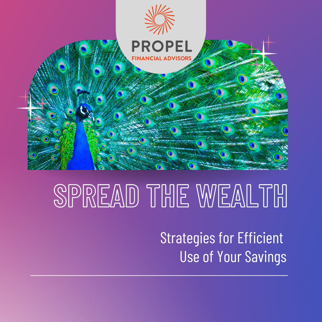 Spread the Wealth:  Strategies for Efficient Use of Your Savings Thumbnail