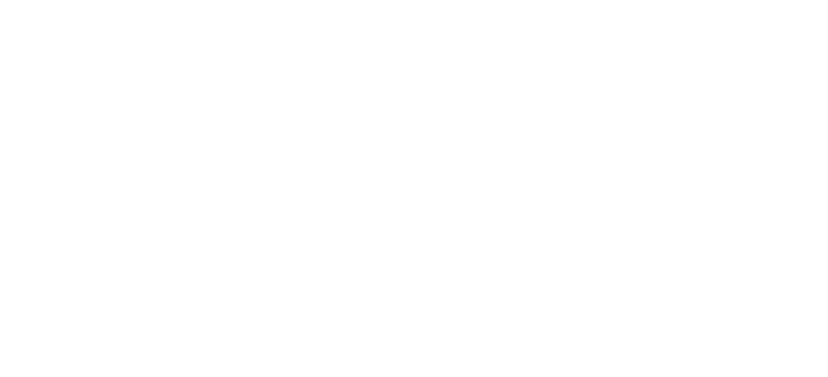 Opus Private Client LLC