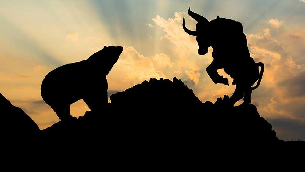 Bulls Bears and Long-Term Benefits of Stock Investing Thumbnail
