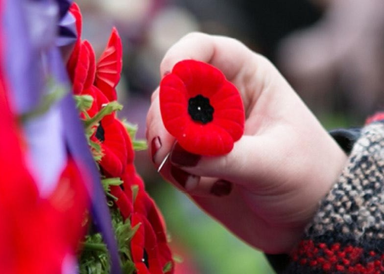 Remembrance Day Thumbnail