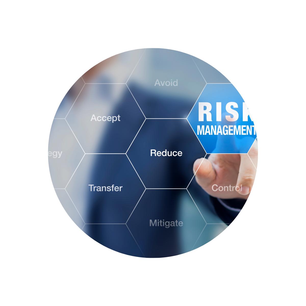 Risk Management Graphic