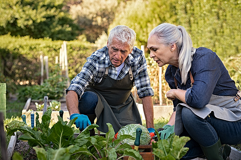 KWB Wealth | Redlands, CA: older couple working in garden