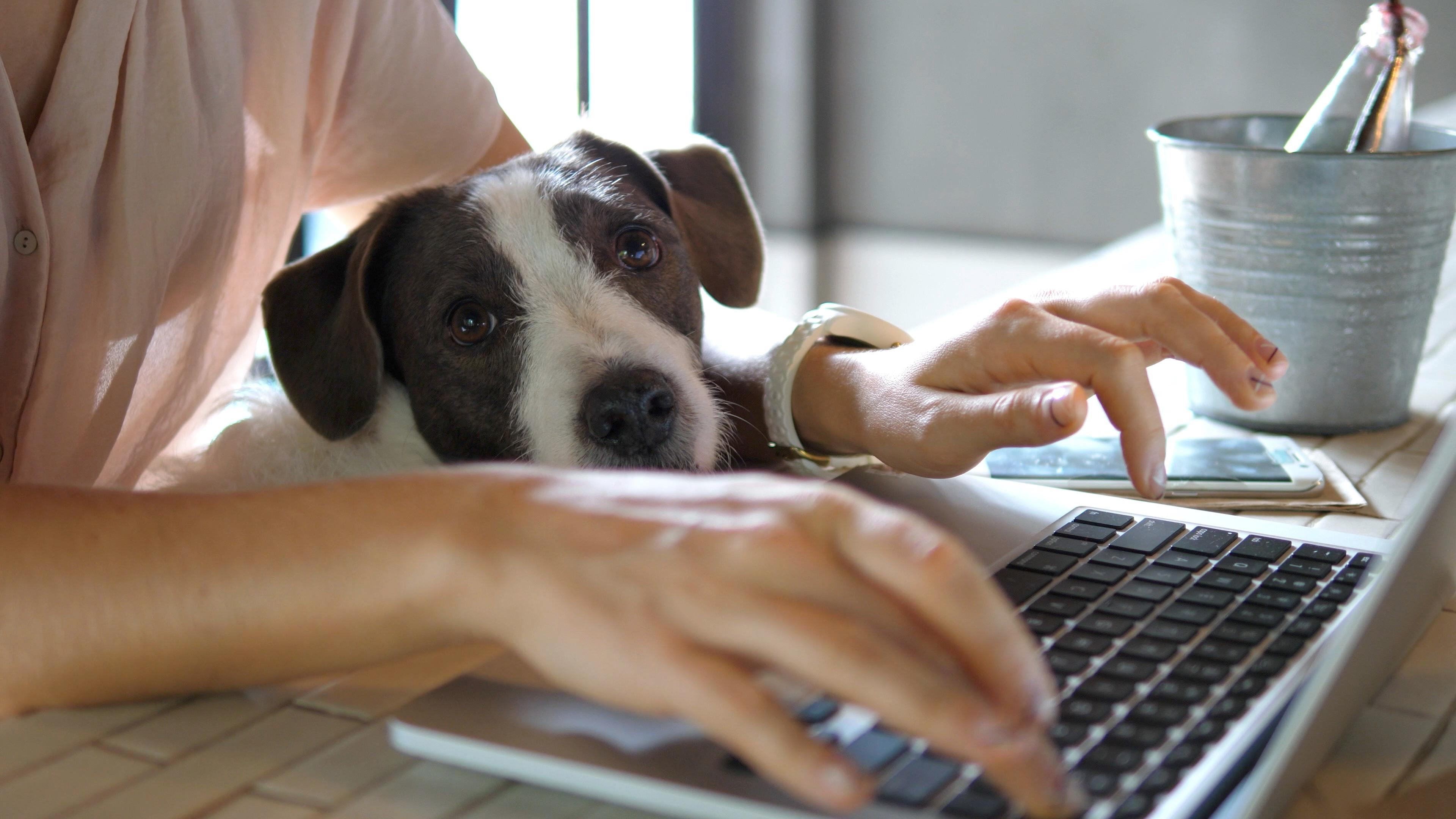 5 Tips on Working From Home Thumbnail