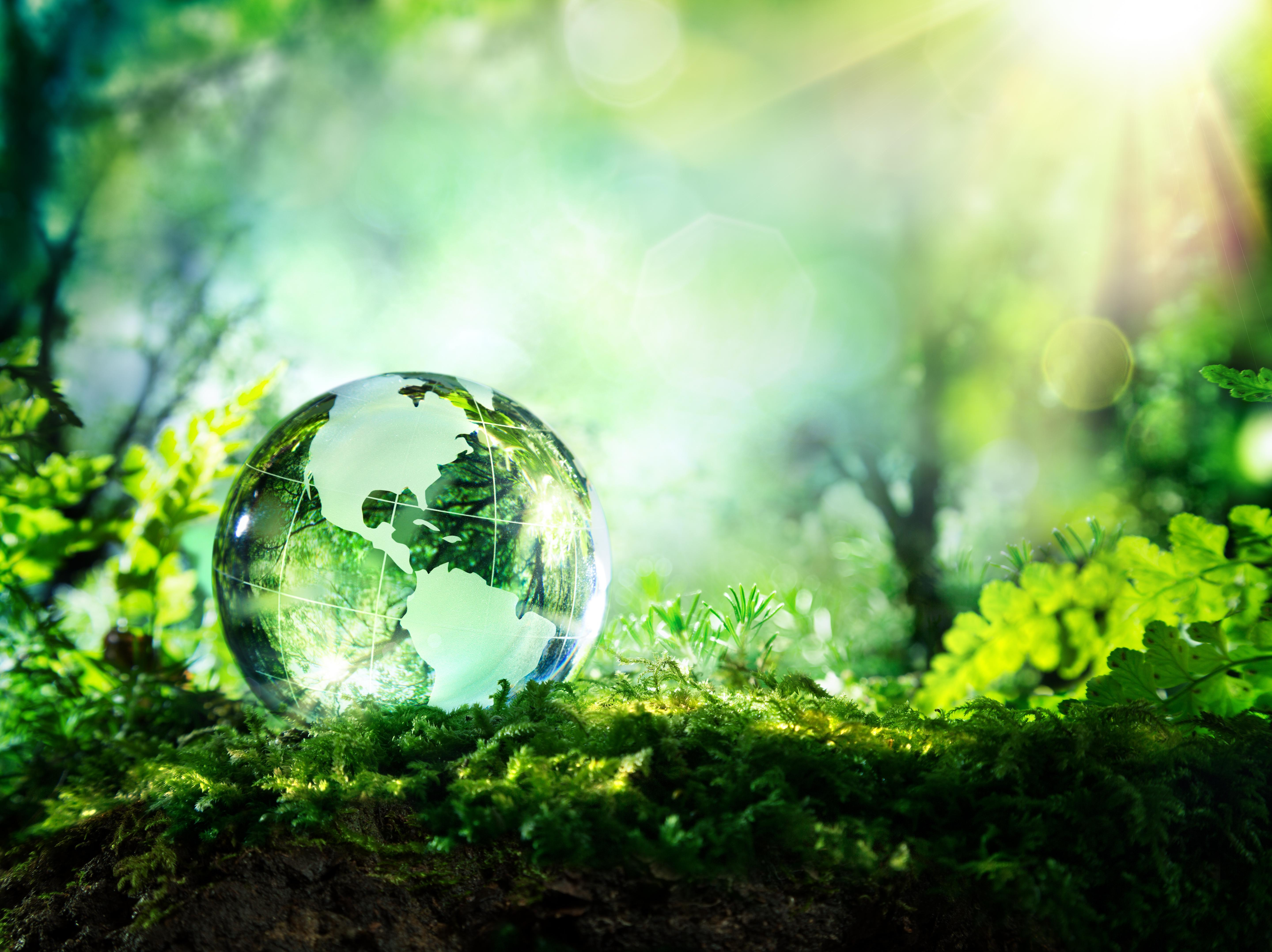 Is Going Green One of Your Core Values? Consider Investing Green. Thumbnail