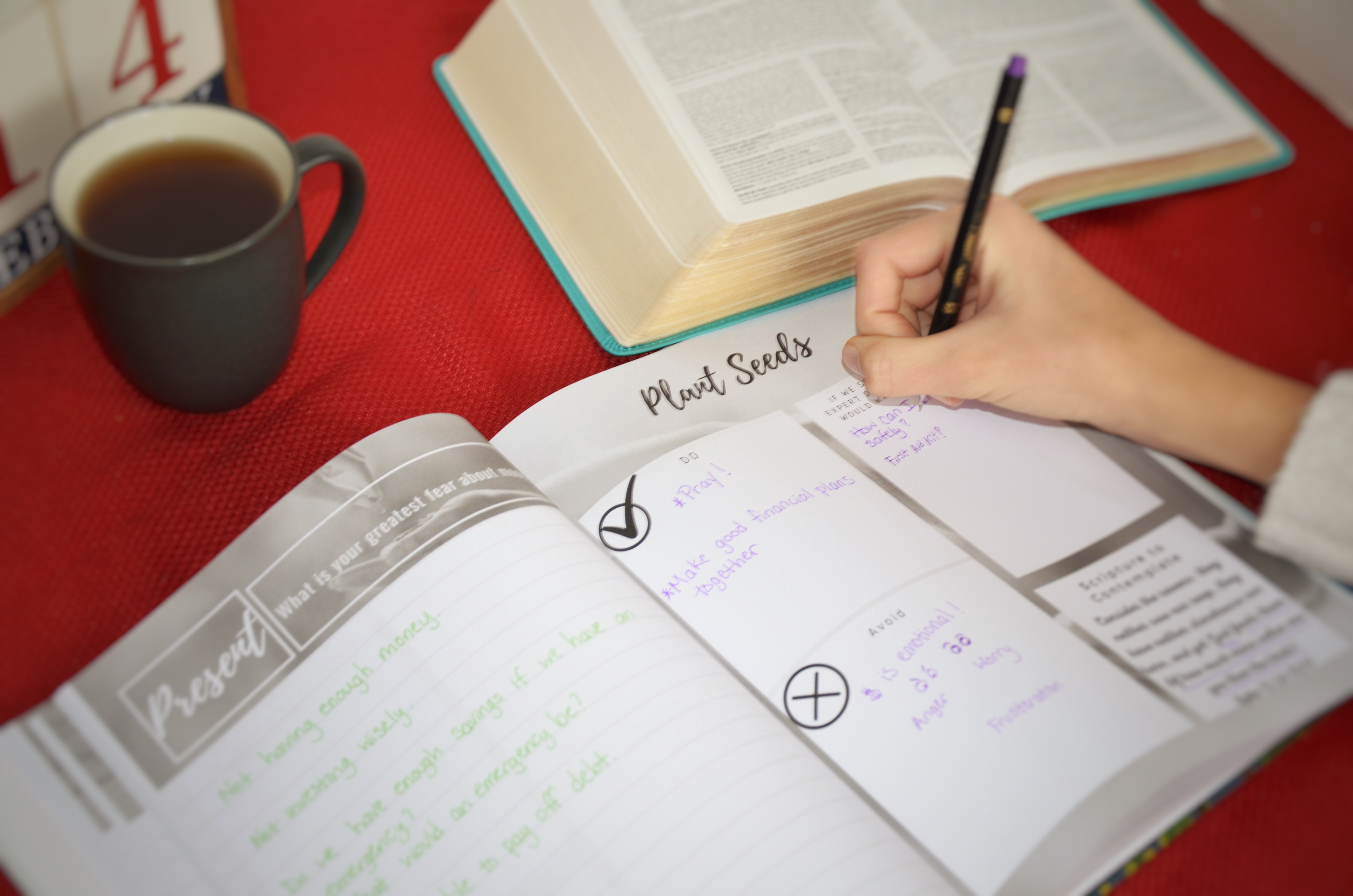 The Vine Journal for Christian Couples and Families