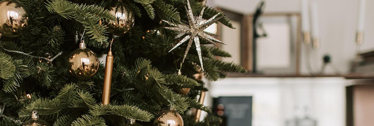 Happy Holidays from FSB Premier Thumbnail