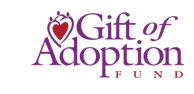 Gift of Adoption fund Charlotte, NC Novare Capital Management