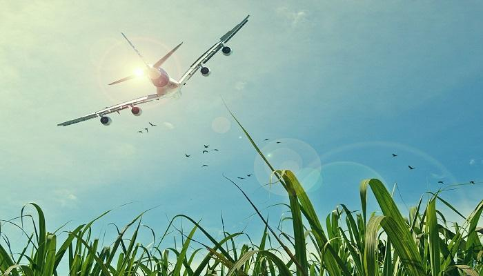 How Our Investment Strategy Helps You Chart a Dream Flight in Retirement Thumbnail
