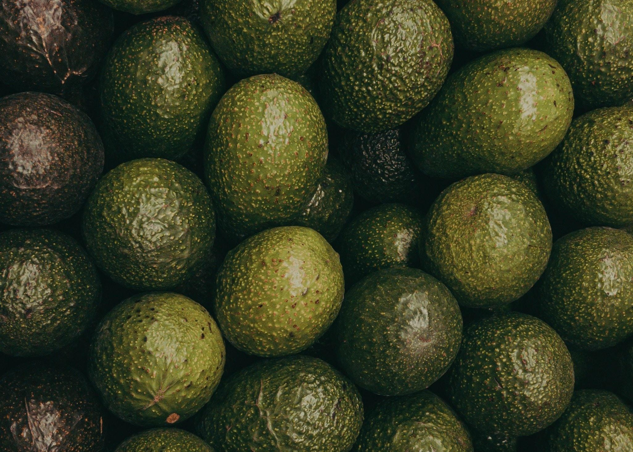 Avocado Finance: The Millennial Approach to Retirement Thumbnail