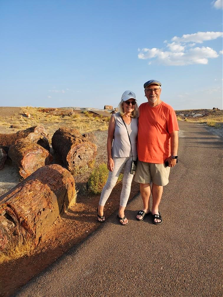 Painted Desert & Petrified Forest National Park - New Mexico