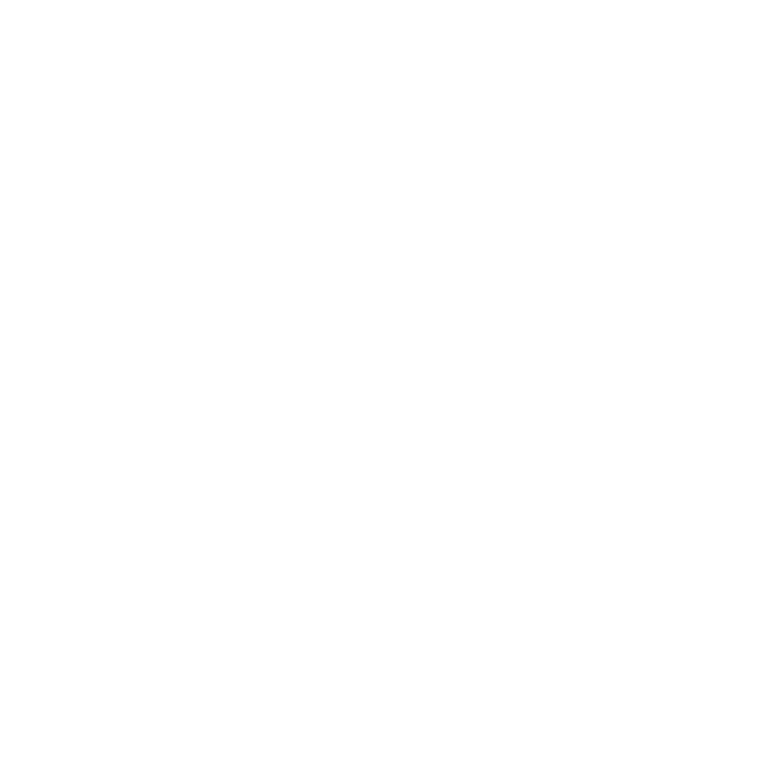 icon of paper with a dollar sign