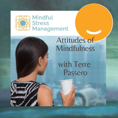 [VIDEO] Attitudes of Mindfulness with Terre Passero Thumbnail
