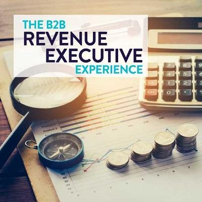 Podcast: The B2B Revenue Executive Experience | Why You're Looking at Investments Wrong Thumbnail