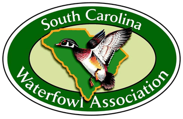south carolina waterfowl association Charleston, SC Wildes Financial Strategies