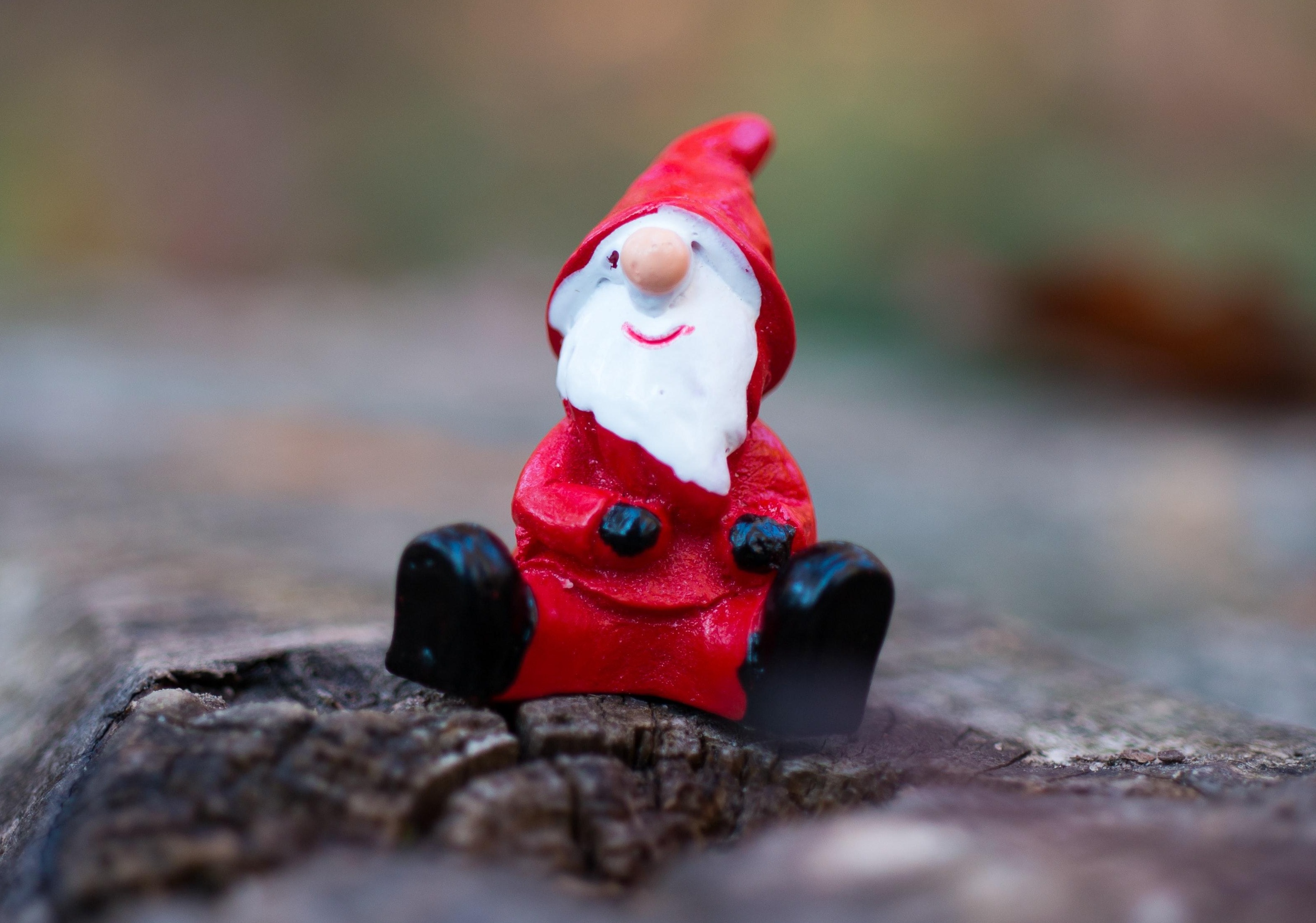 Santa Fell Off the Roof! Will Your Insurance Cover It?  Thumbnail