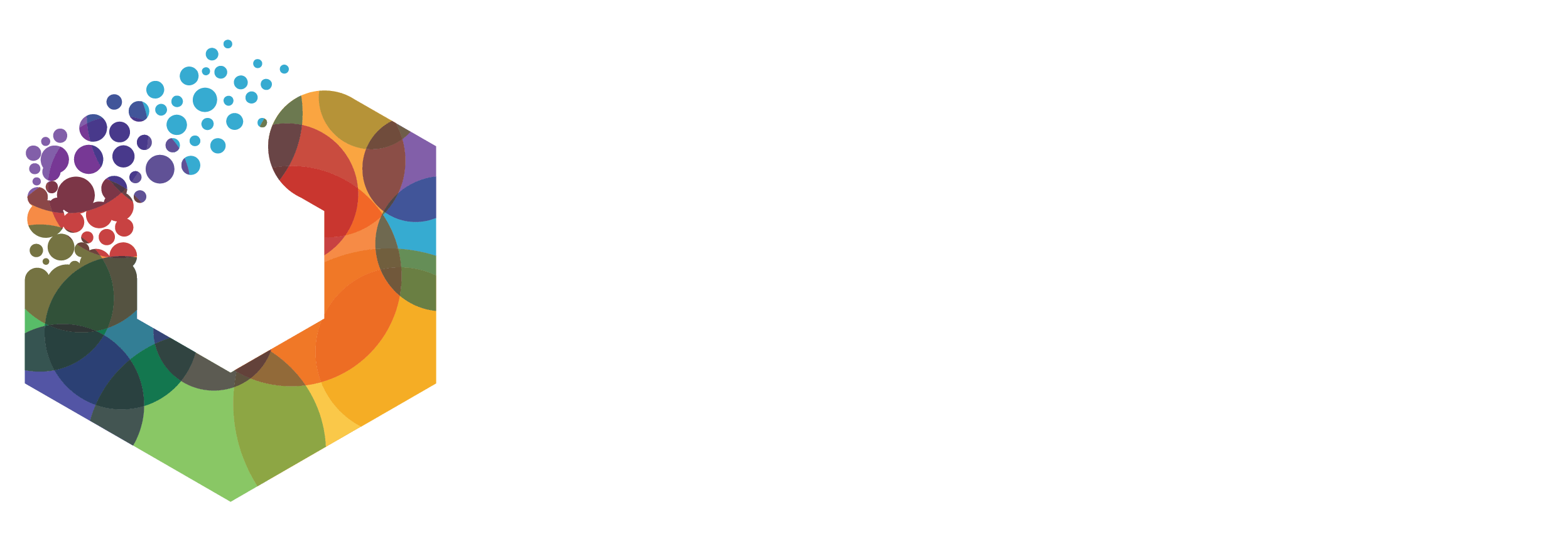 Logo for WMGNA