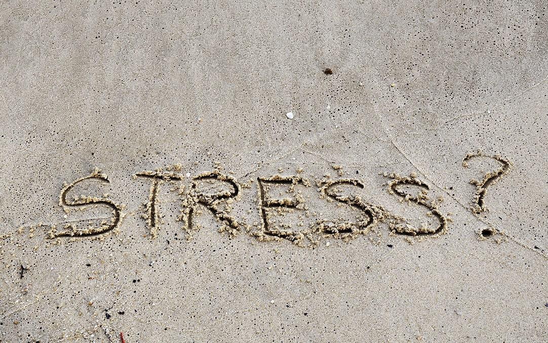 Stress Test Thumbnail
