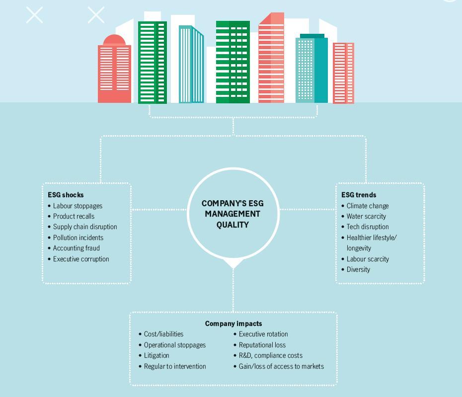 Company's ESG Management Quality