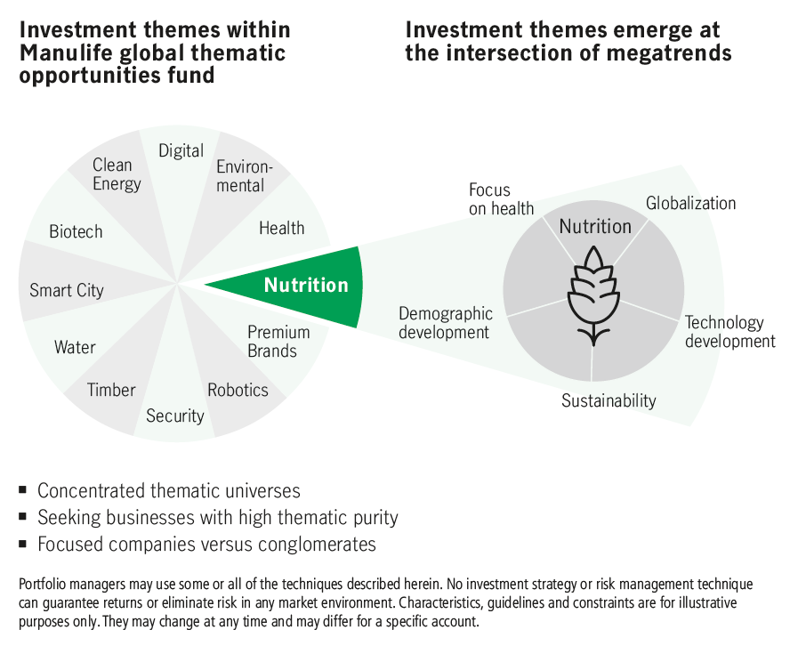 Investment themes emerge at the intersection of megatreands