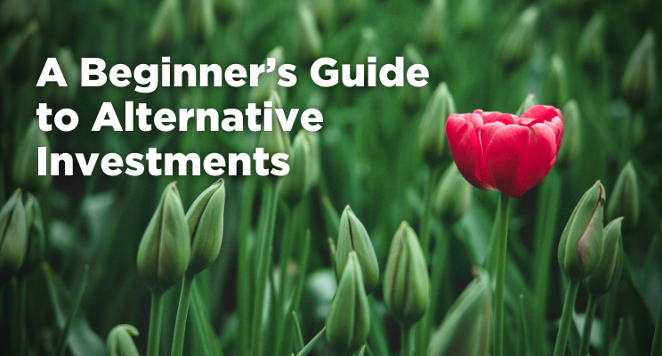 A Beginner's Guide to Alternative Investments Thumbnail