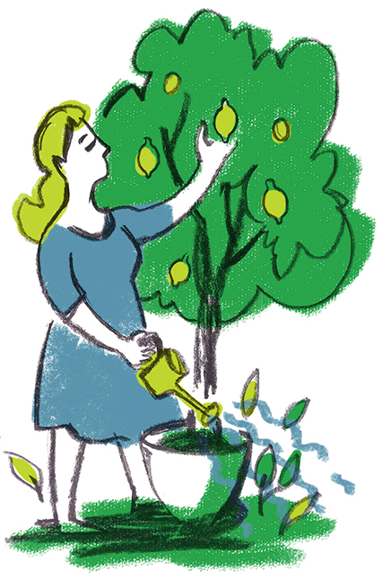 illustration of tree growing in a pot