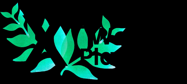 Logo for X2 Wealth Planning, LLC