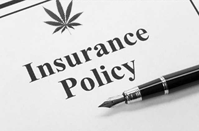 Life Insurance, meet Mary Jane Thumbnail