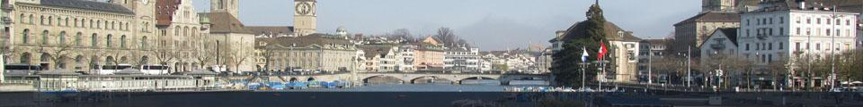 The Swiss View Thumbnail