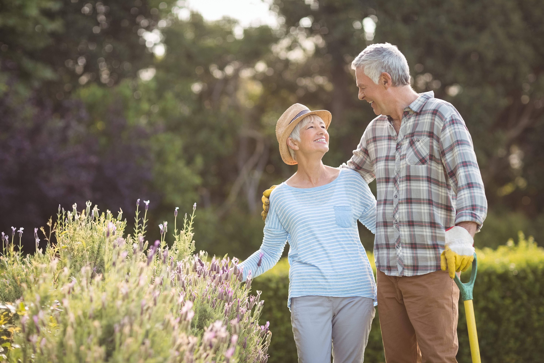 Elderly couple gardening.