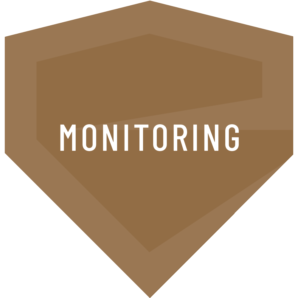 Entruity - Monitoring
