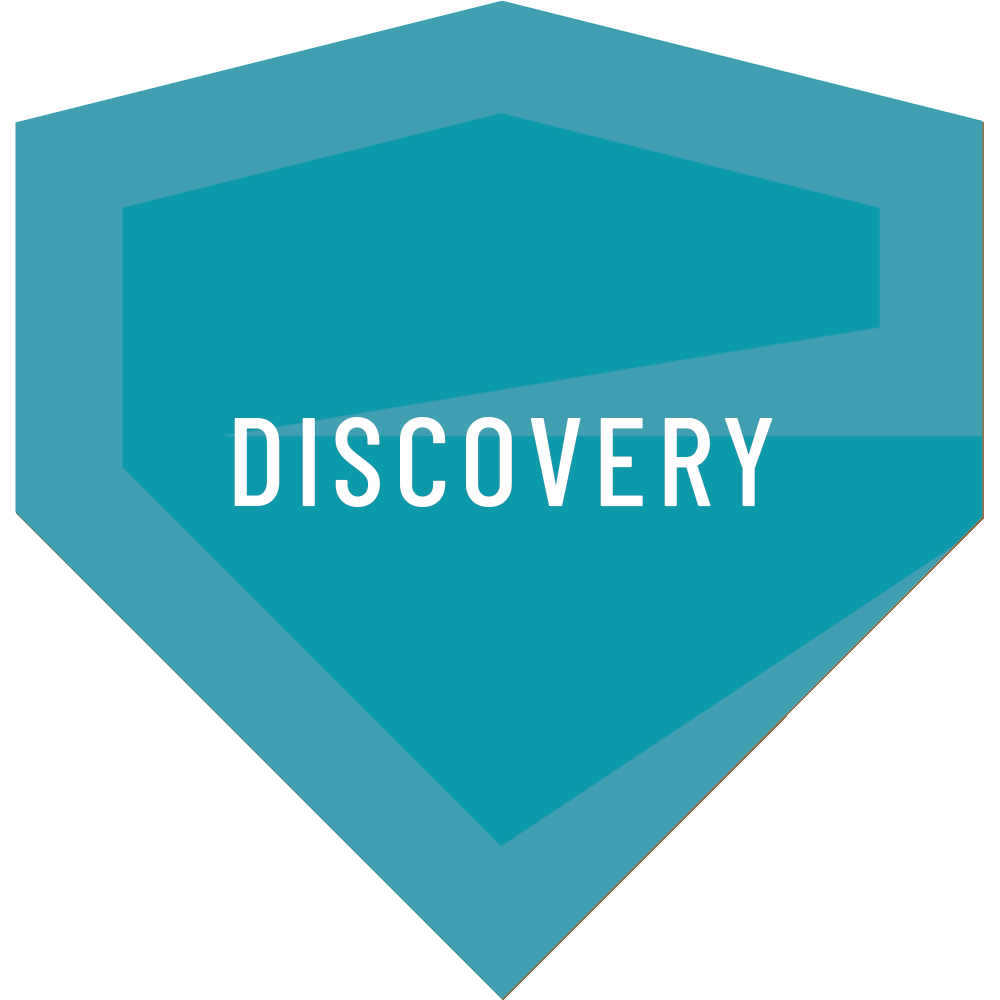 Entruity - Discovery