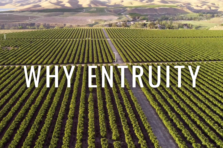 Entruity - Why Entruity