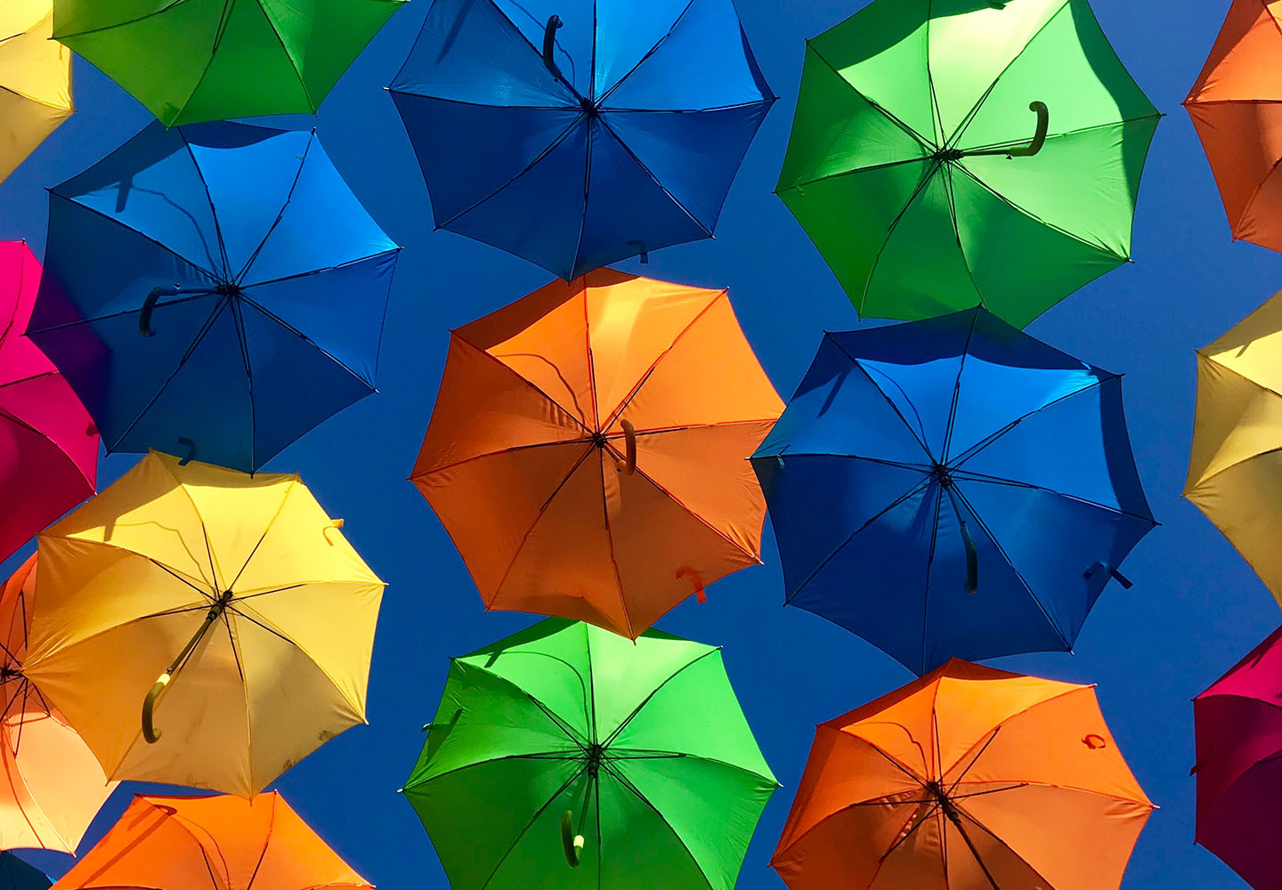 How Does an Umbrella Insurance Policy Work? Thumbnail